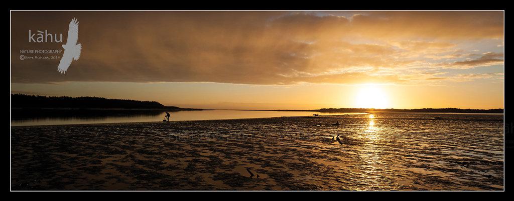 Sunset Manawatu Estuary   L10