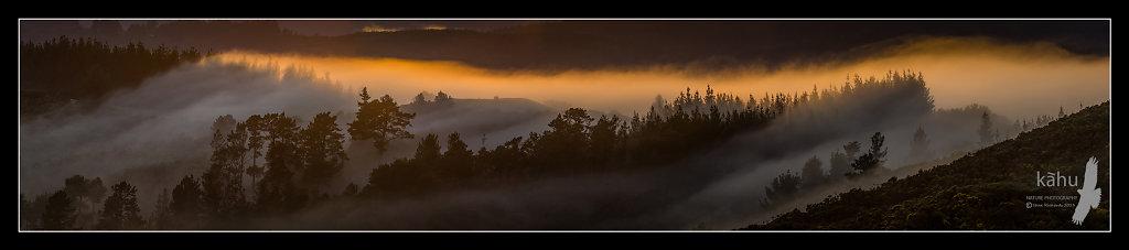 Misty sunrise Kaitoke  -  P11