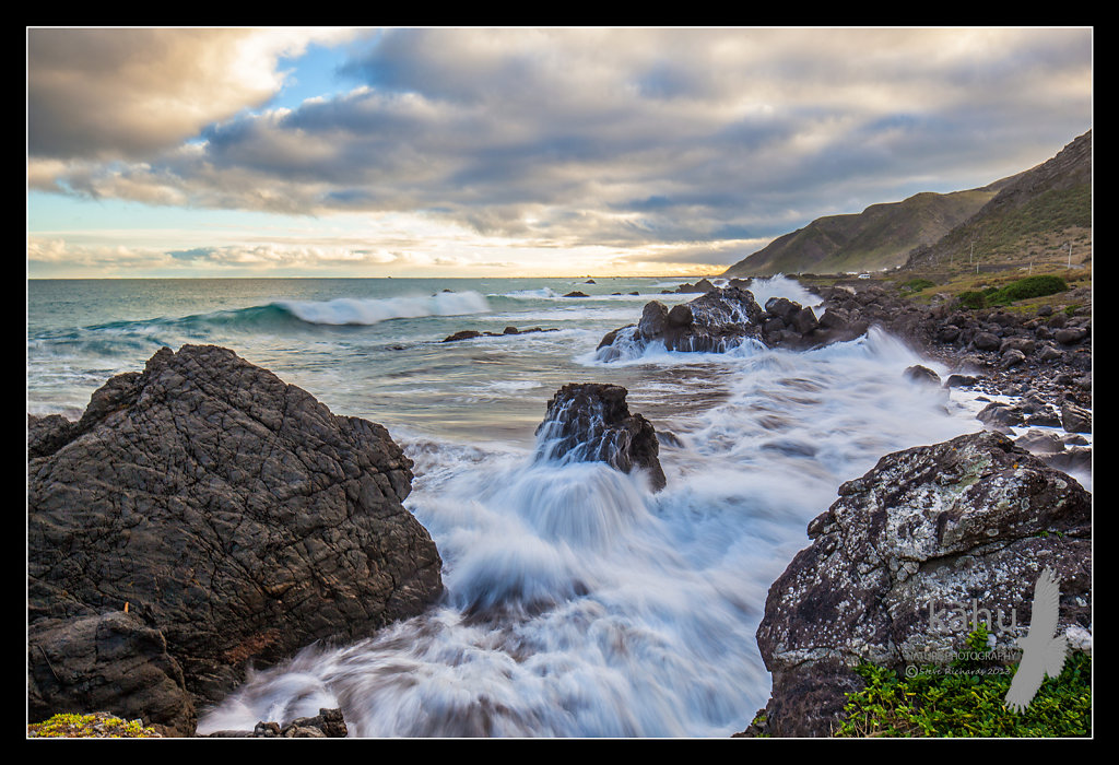 Mangatoetoe, Palliser Bay   L49