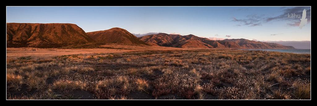 Evening, looking around towards Cape Palliser  P13
