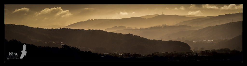 Looking down the Hutt Valley towards Wellington in evening light