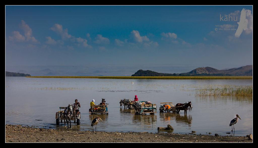 Lake-Ziway.jpg