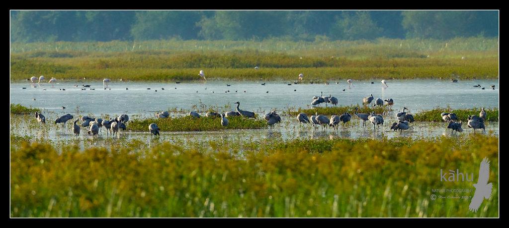 Lake-Chelekcheka.jpg