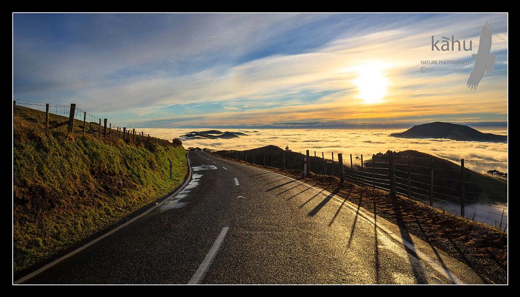 Sunrise on the Otago Peninsular  L33