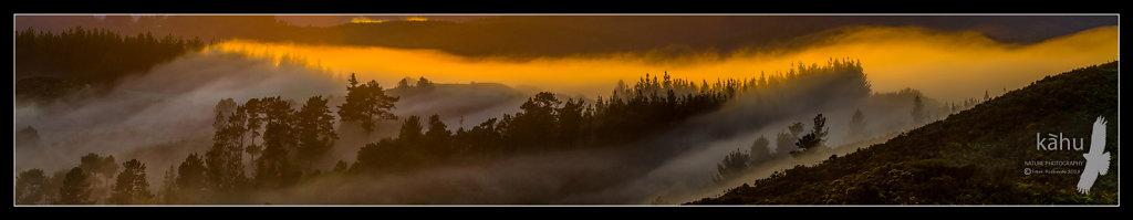 Sunrise gets colourful Kaitoke  -  P10