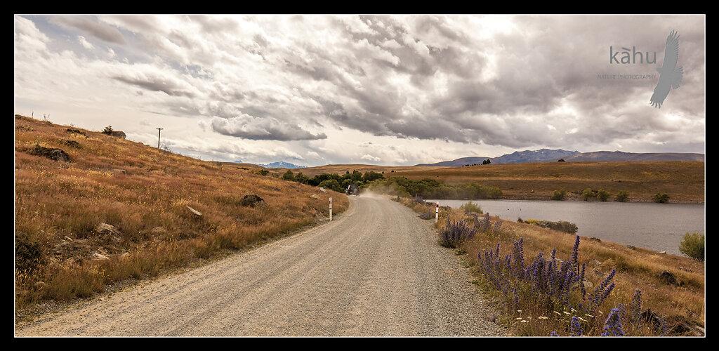 Road past Lake MacGregor, near Tekapo   -  L7