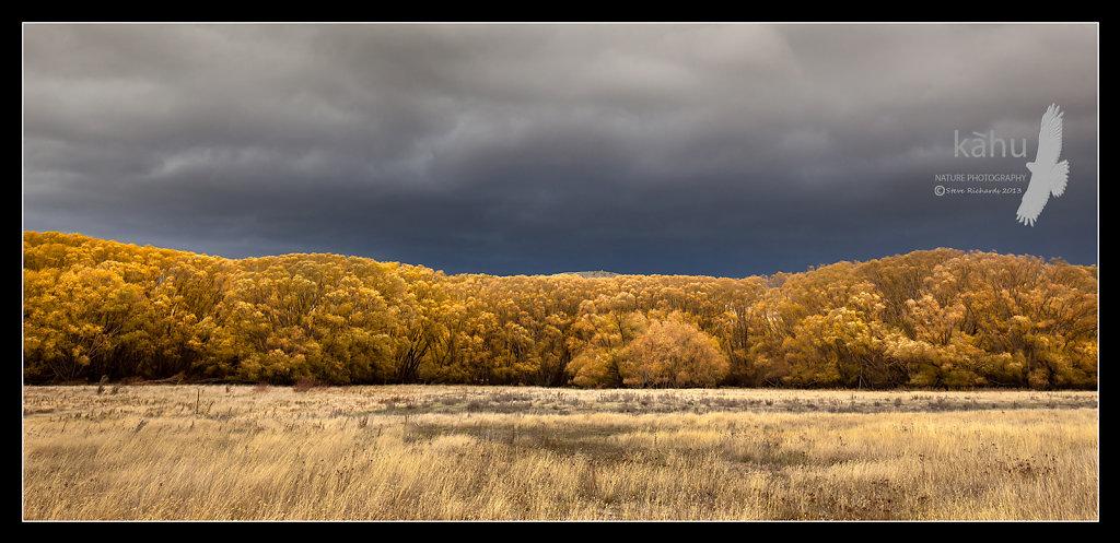 Storm brewingear Tarras  -  L26